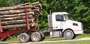 Flatbed Freight out of Indianapolis, Indiana