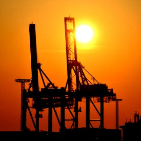 Freight Forwarding vs  Common Logistics & Trucking Services